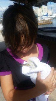 fiona egret